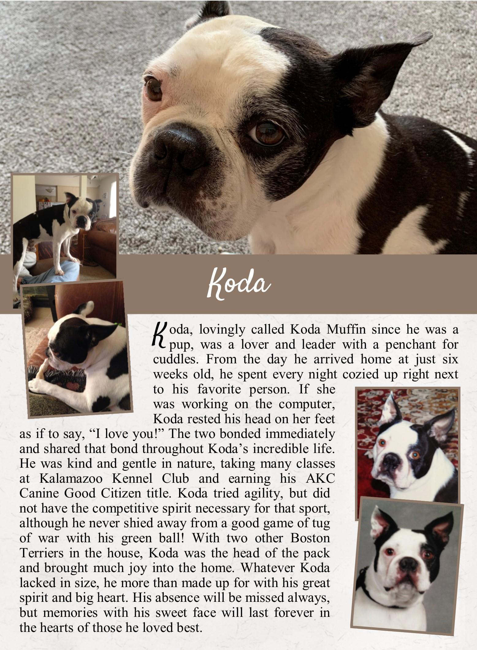 Koda's Life Tail