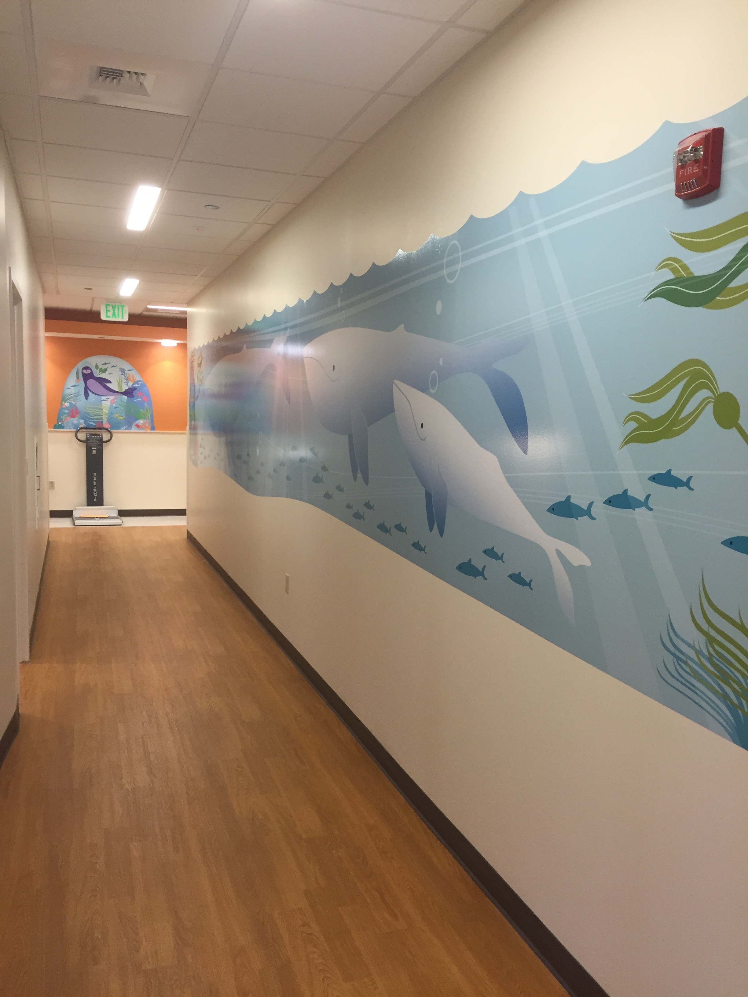 Whale wall 4.jpg