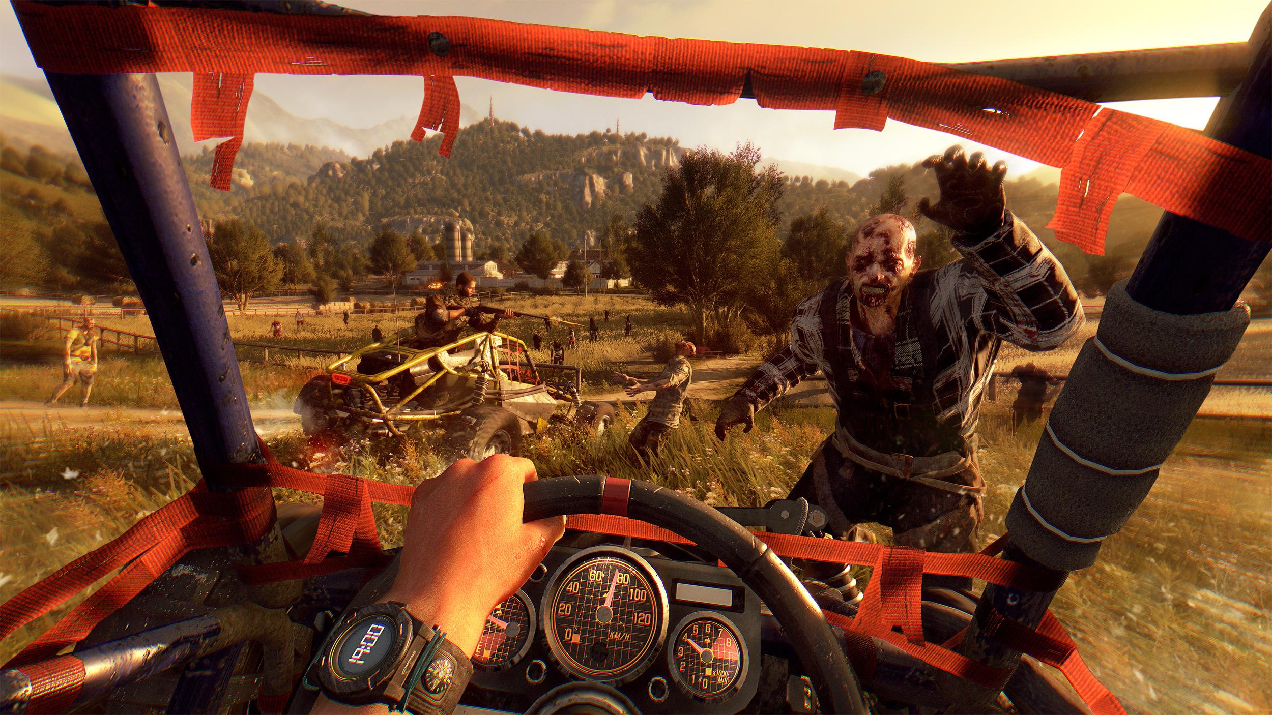 Buggy_Driving_FPP.jpg