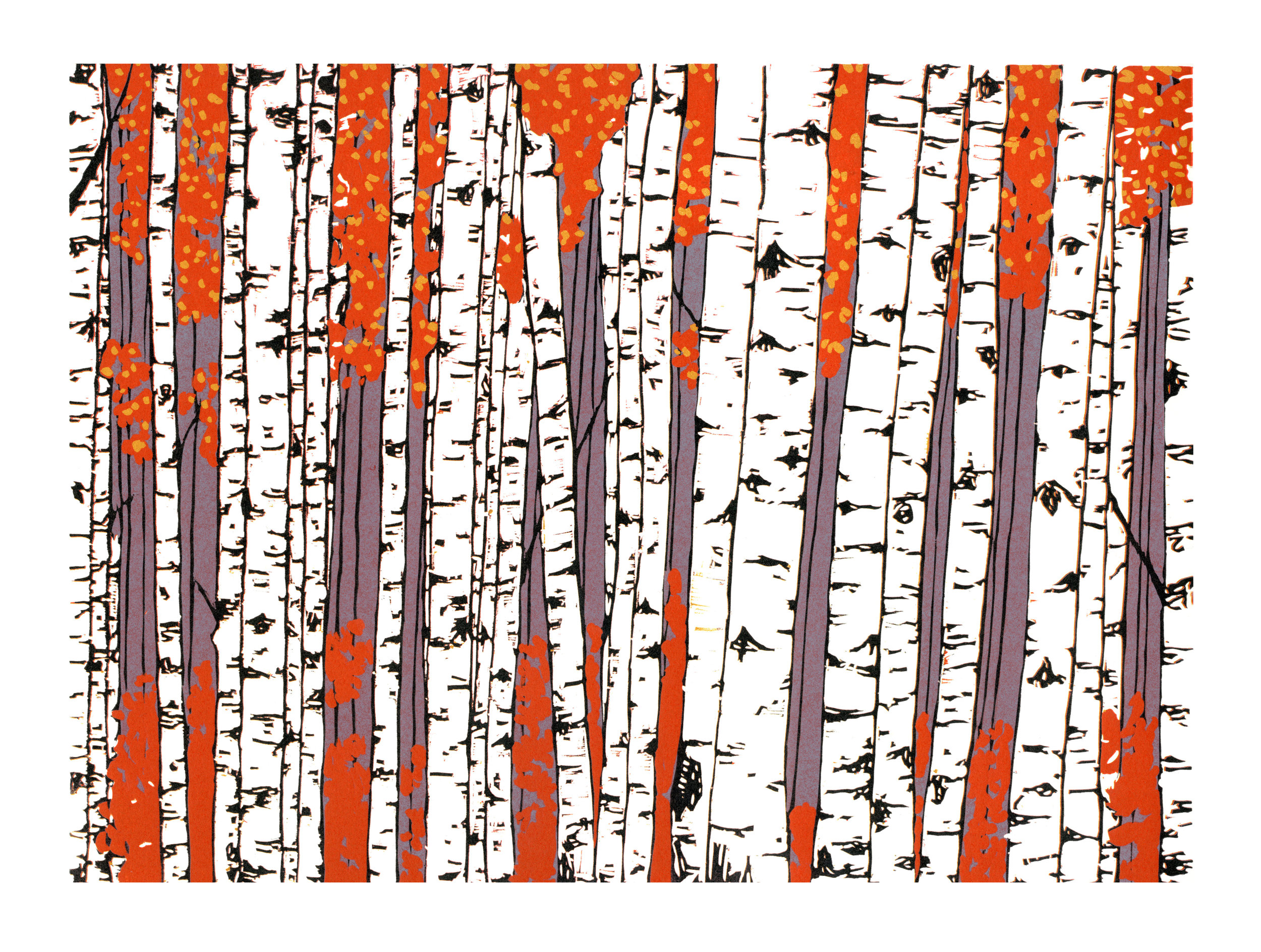 Birch Trees Olga Wieczorek