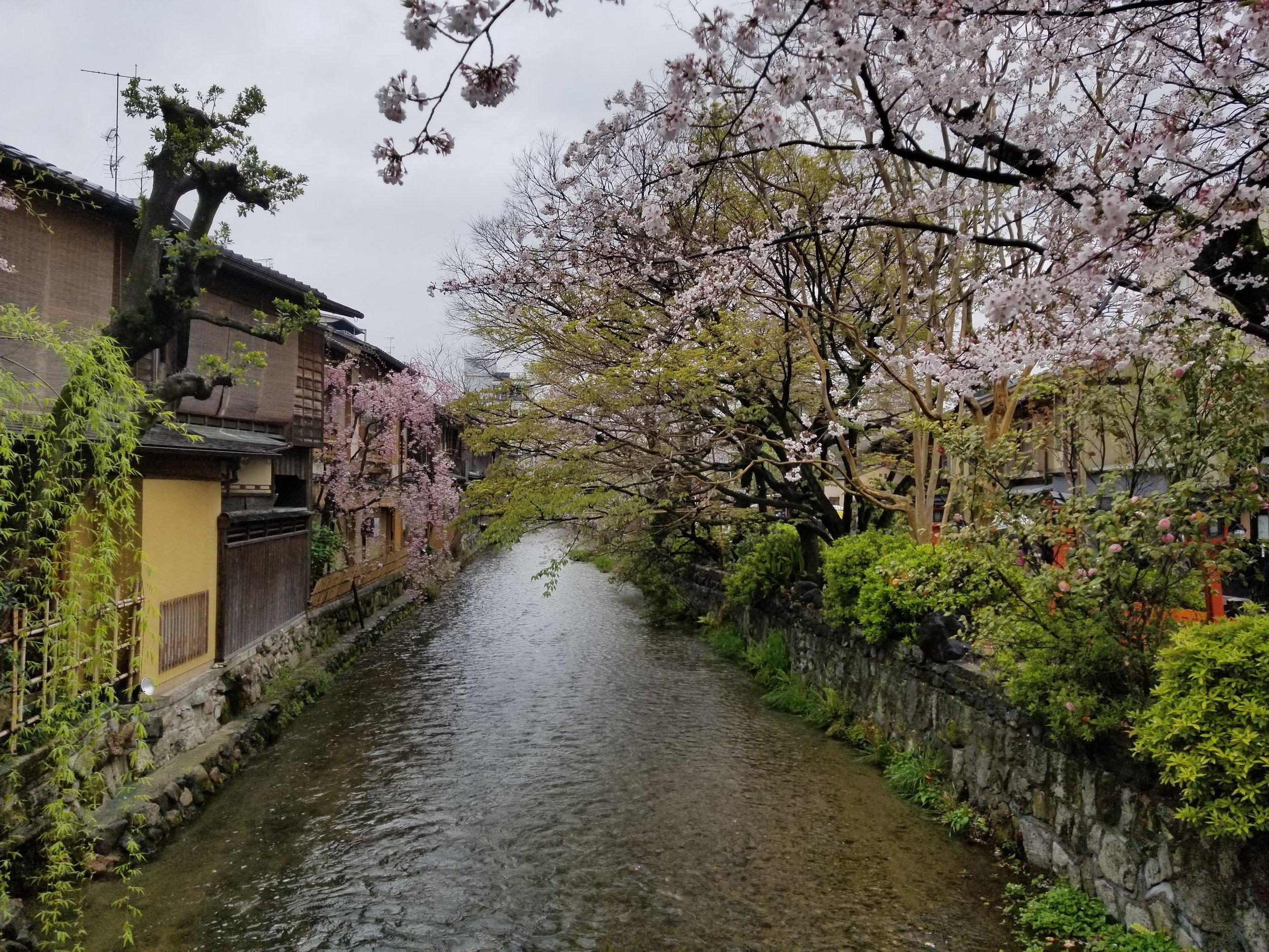 Japan 2.jpg