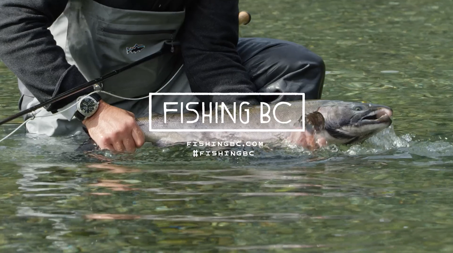 Fishing BC - Clayoquot Helifishing