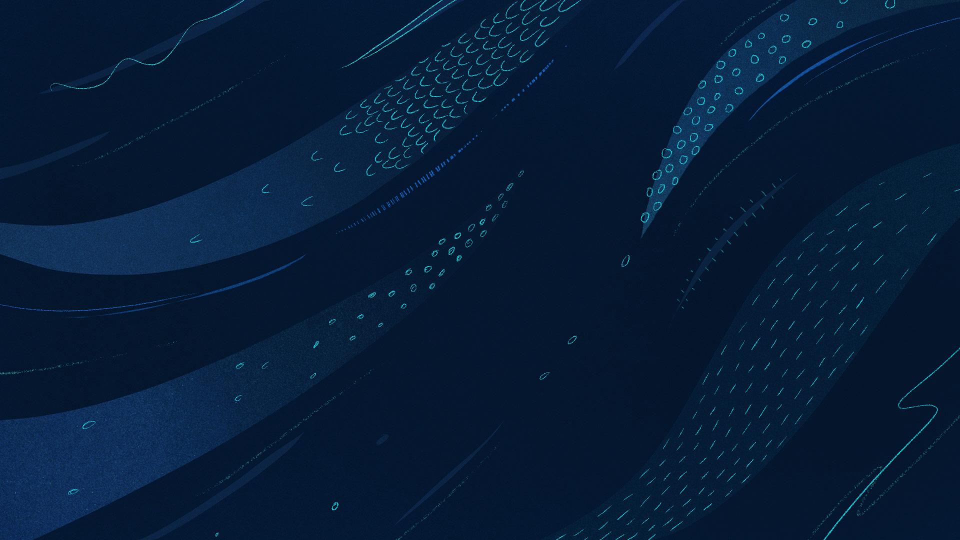 Eels_Web.jpg