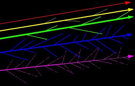 ACMIbook light scatter.jpeg