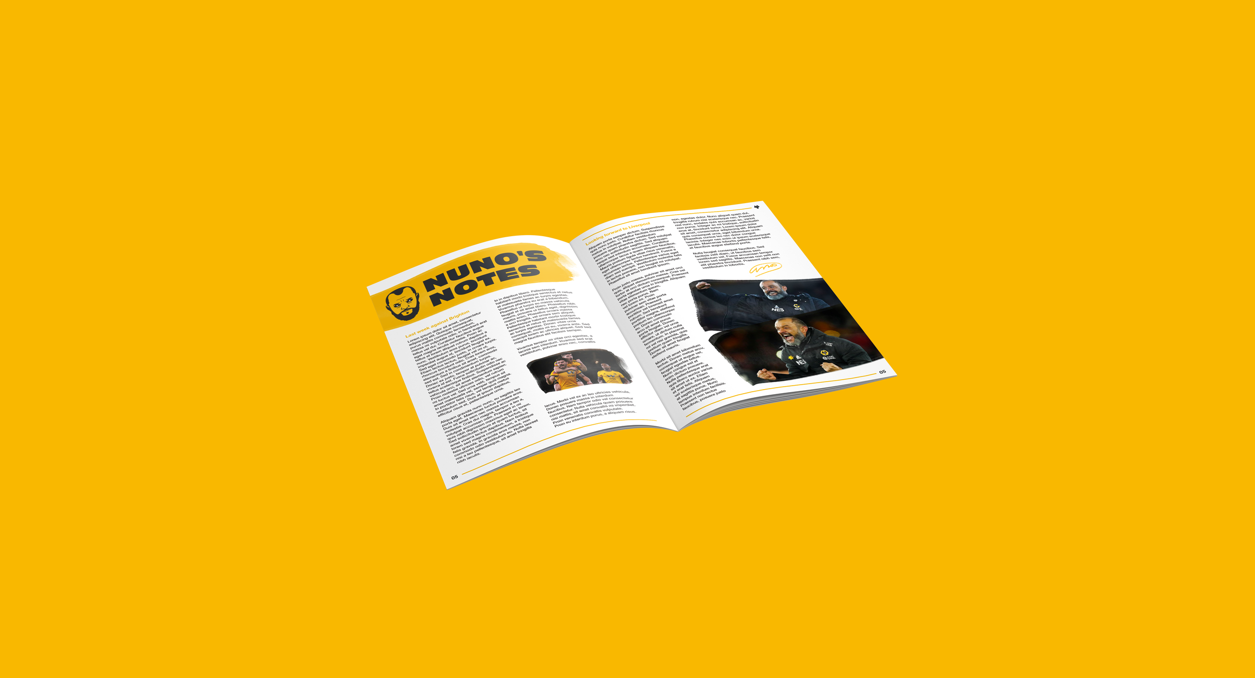 Wolves 2019/20 nuno notes programme.png