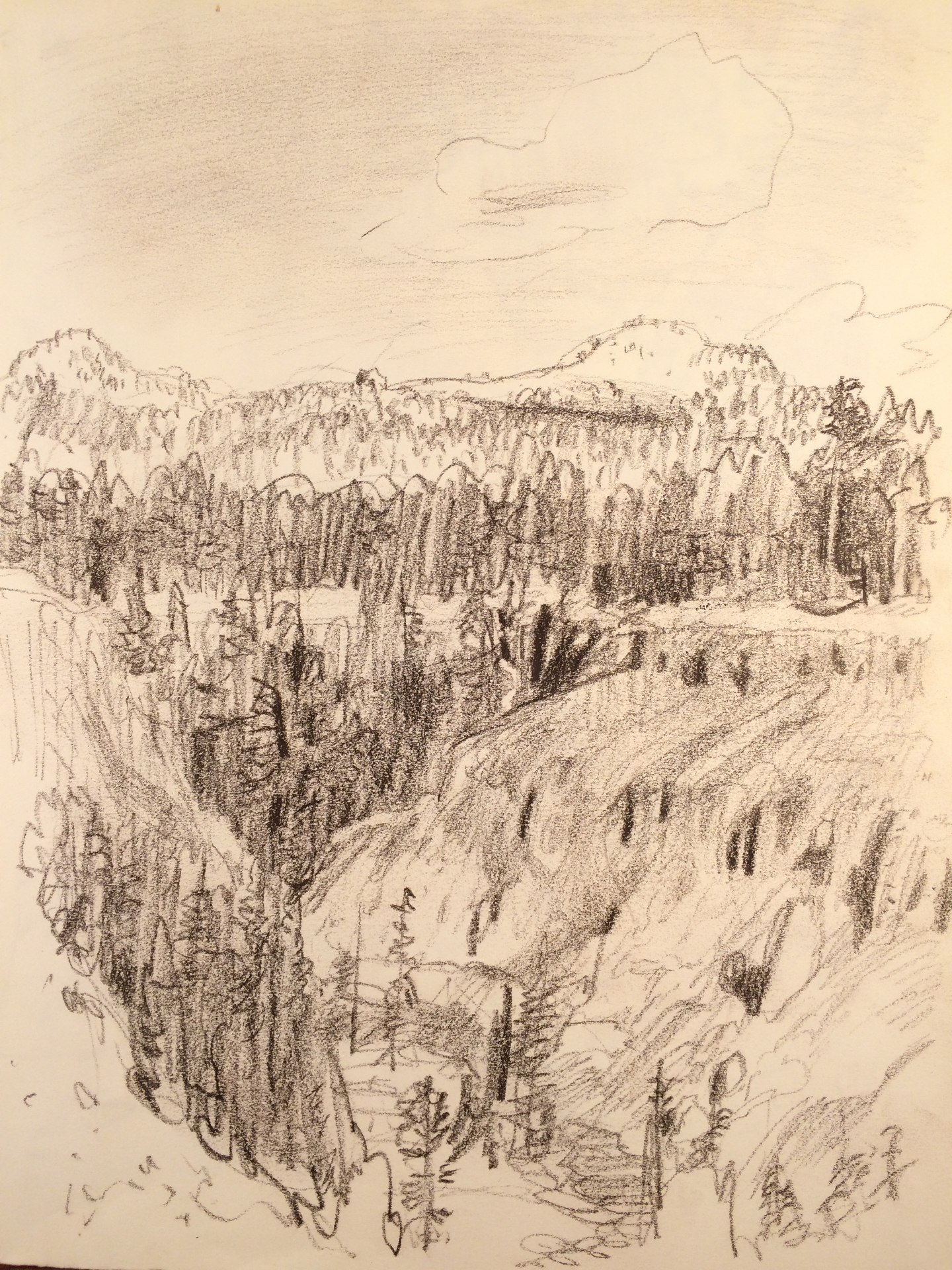 CLNP Annie's Creek drawing
