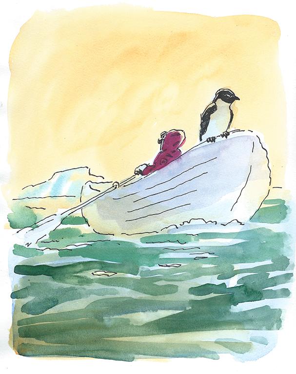 Take a penguin.jpg