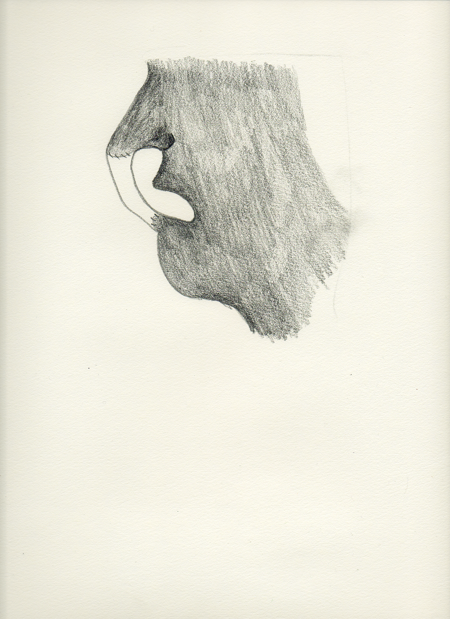 "Nose Mouth   Graphite on paper  11.75"" x 16"""