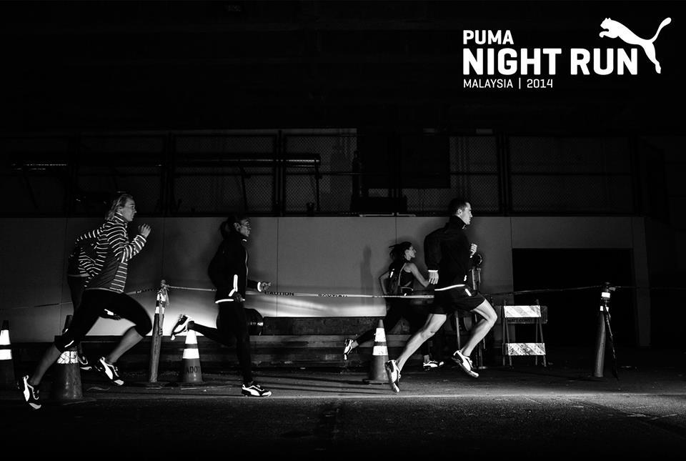 Puma 2.jpg