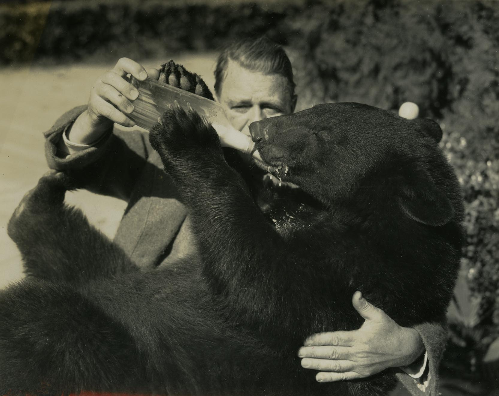 EAM&Bear(ca1895)227 copy.jpg