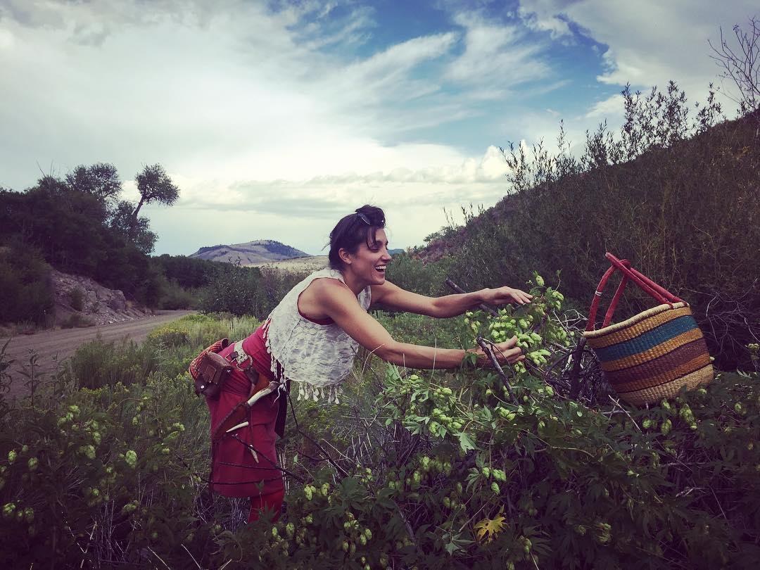 foraging wild herbs herbalism medicinal plants classes skin care