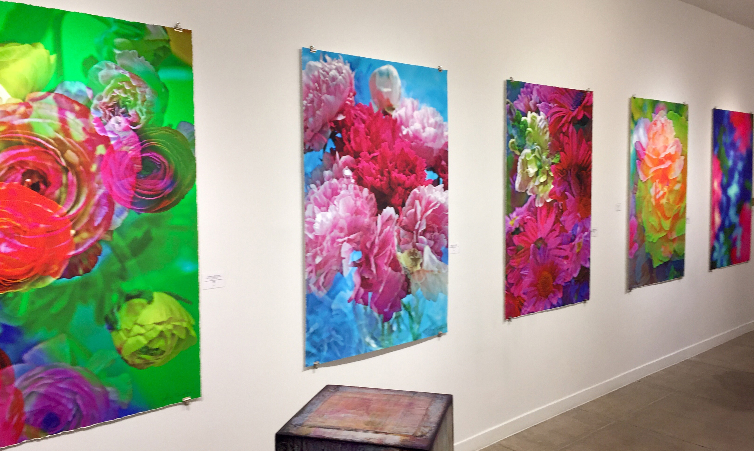 Johnny Nicoloro at Ted Casablanca, Palm Springs Feb/March 2016