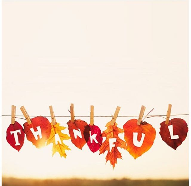 We are Thankful for all of you. Happy Thanksgiving. Closed tonight, back tomorrow