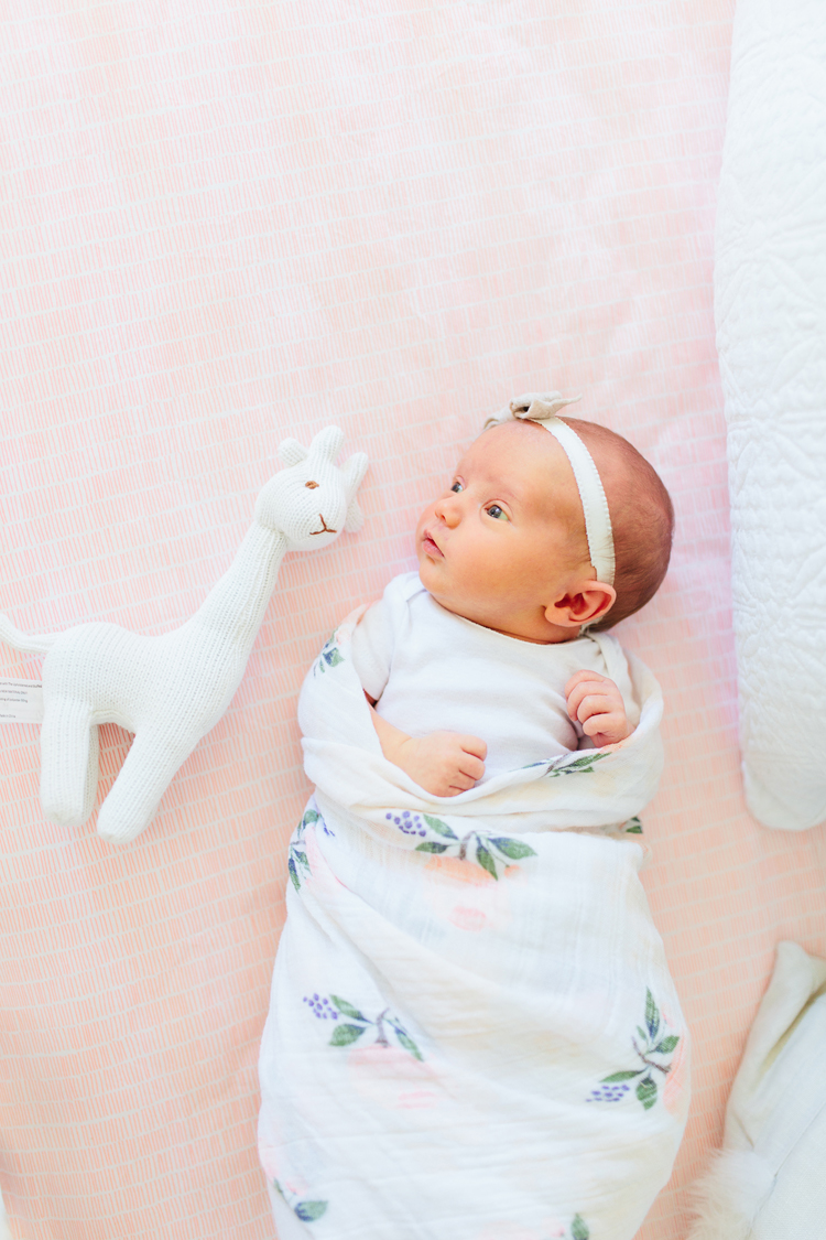 Baby Girl Nursery Blush Pink - Akin Design Studio