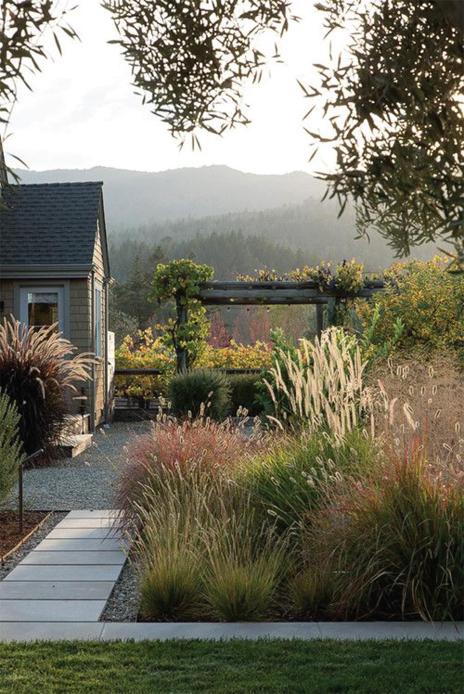 Statement Gardens: tall grassy landscapes with concrete paver walkways | Akin Design Studio Blog