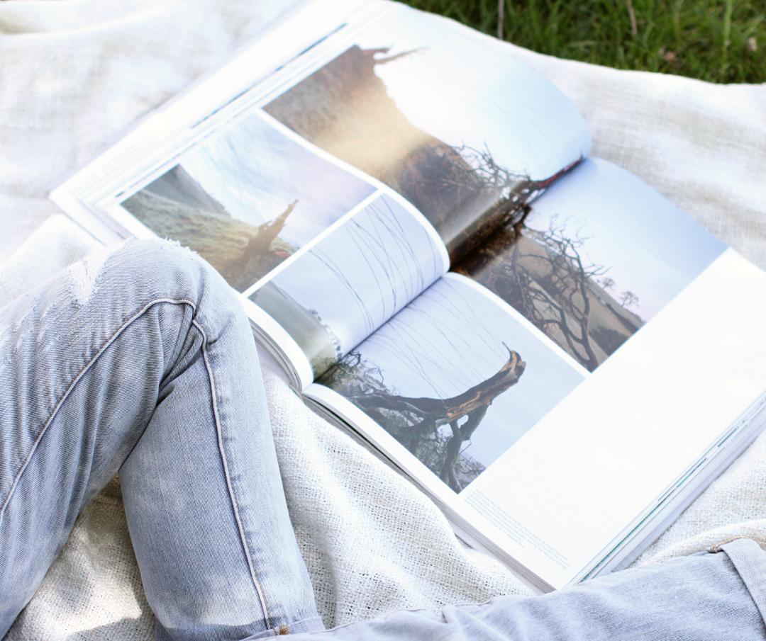 Andy Goldsworthy Book Feature | Akin Design Studio Blog