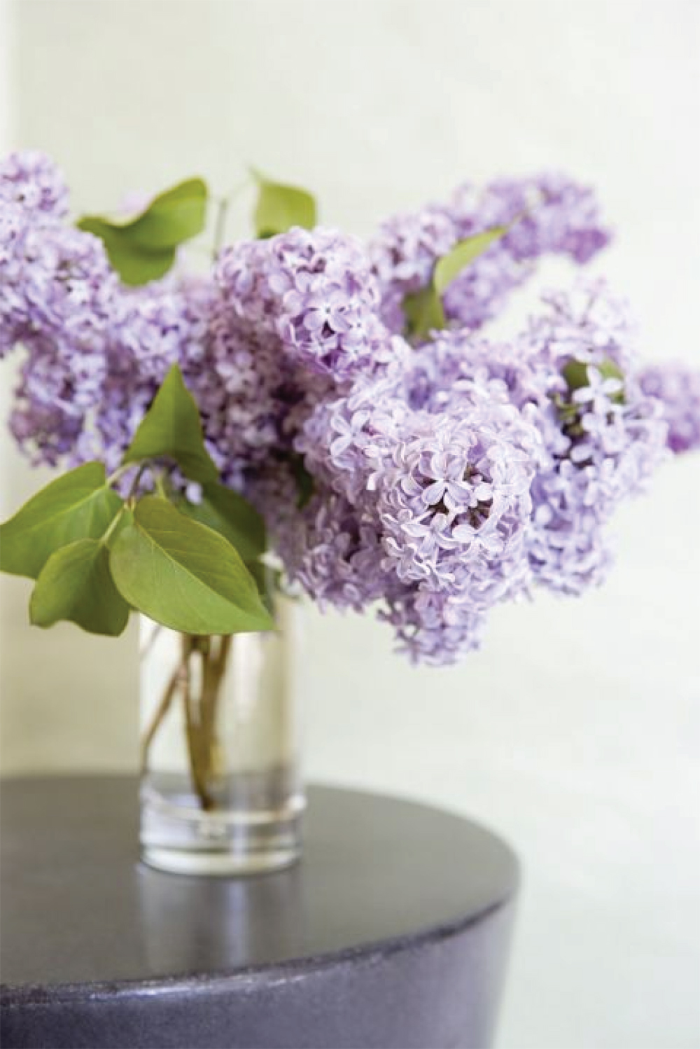 Lilac Floral Inspiration | Akin Design Studio Blog