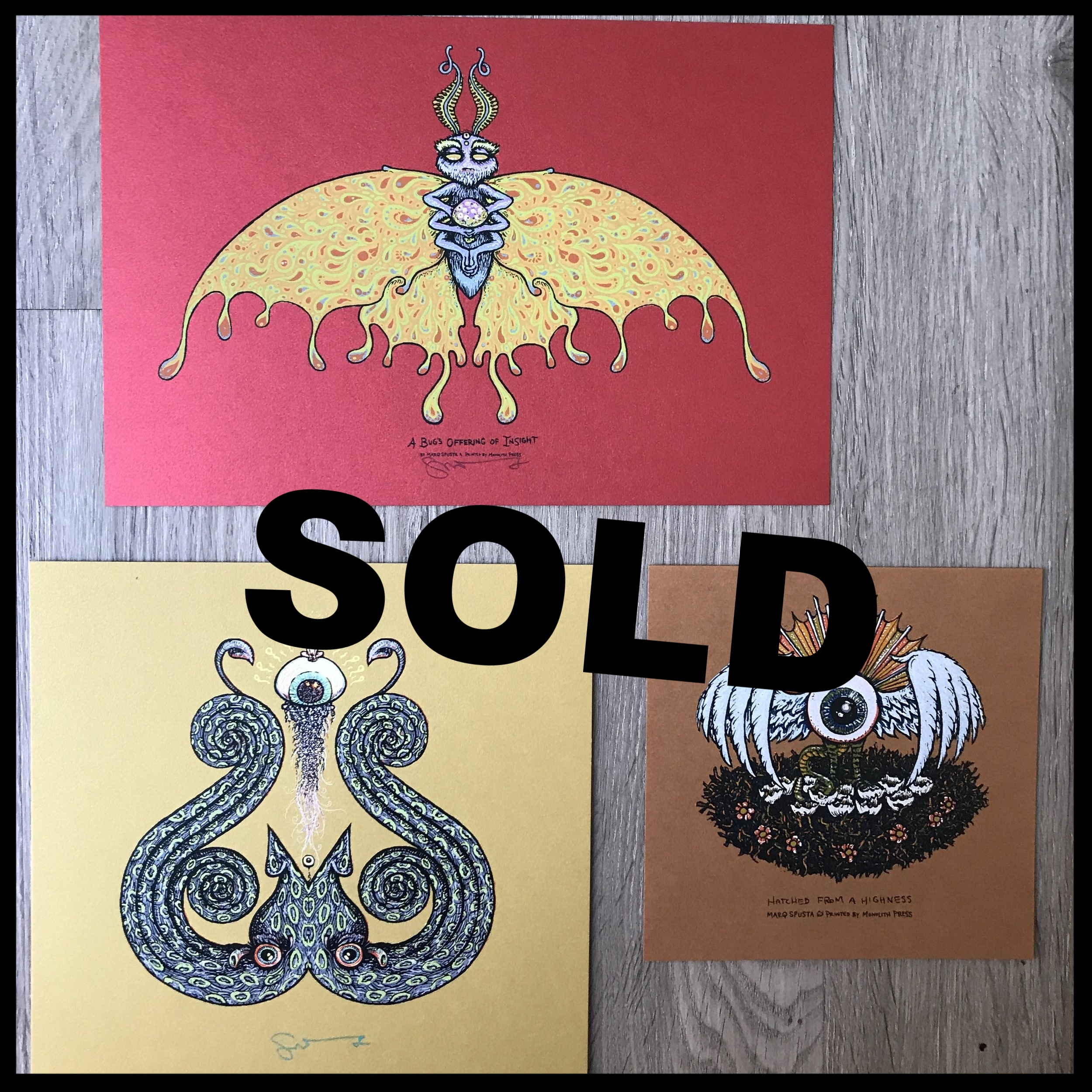 "$75 - PACK F - A Bug's Offering of Insight 6"" x 9"" + Hatched from a Highness 5"" x 5"" + Squiddy 7"" x 7"""