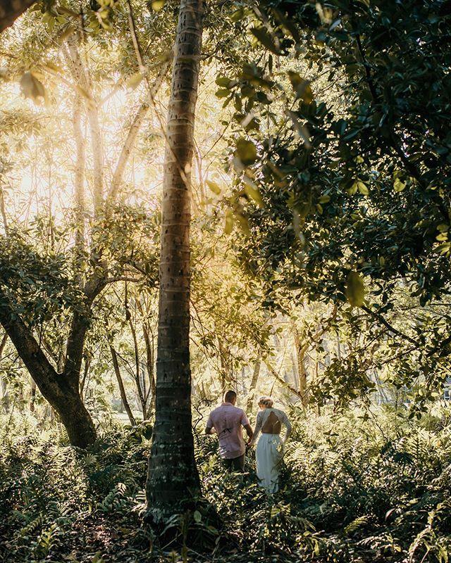 Jungle love💚 #kauai