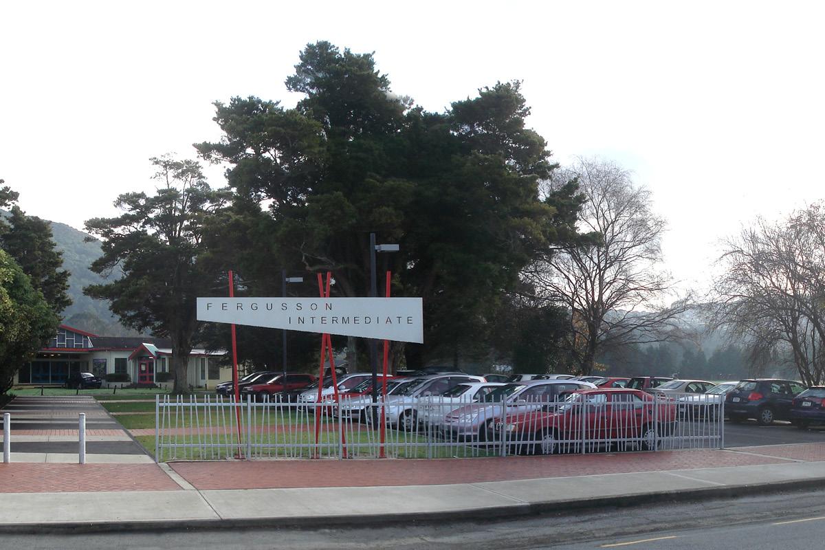 Fergusson School