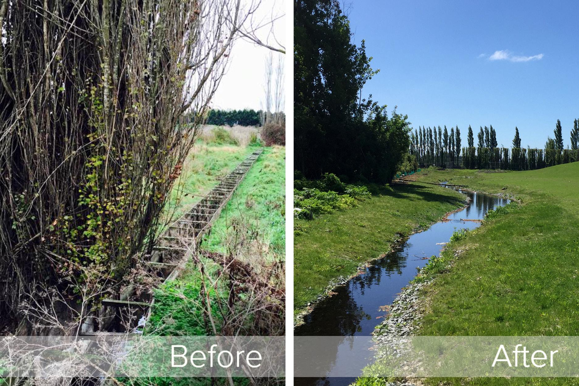Marshland School Landscape Restoration