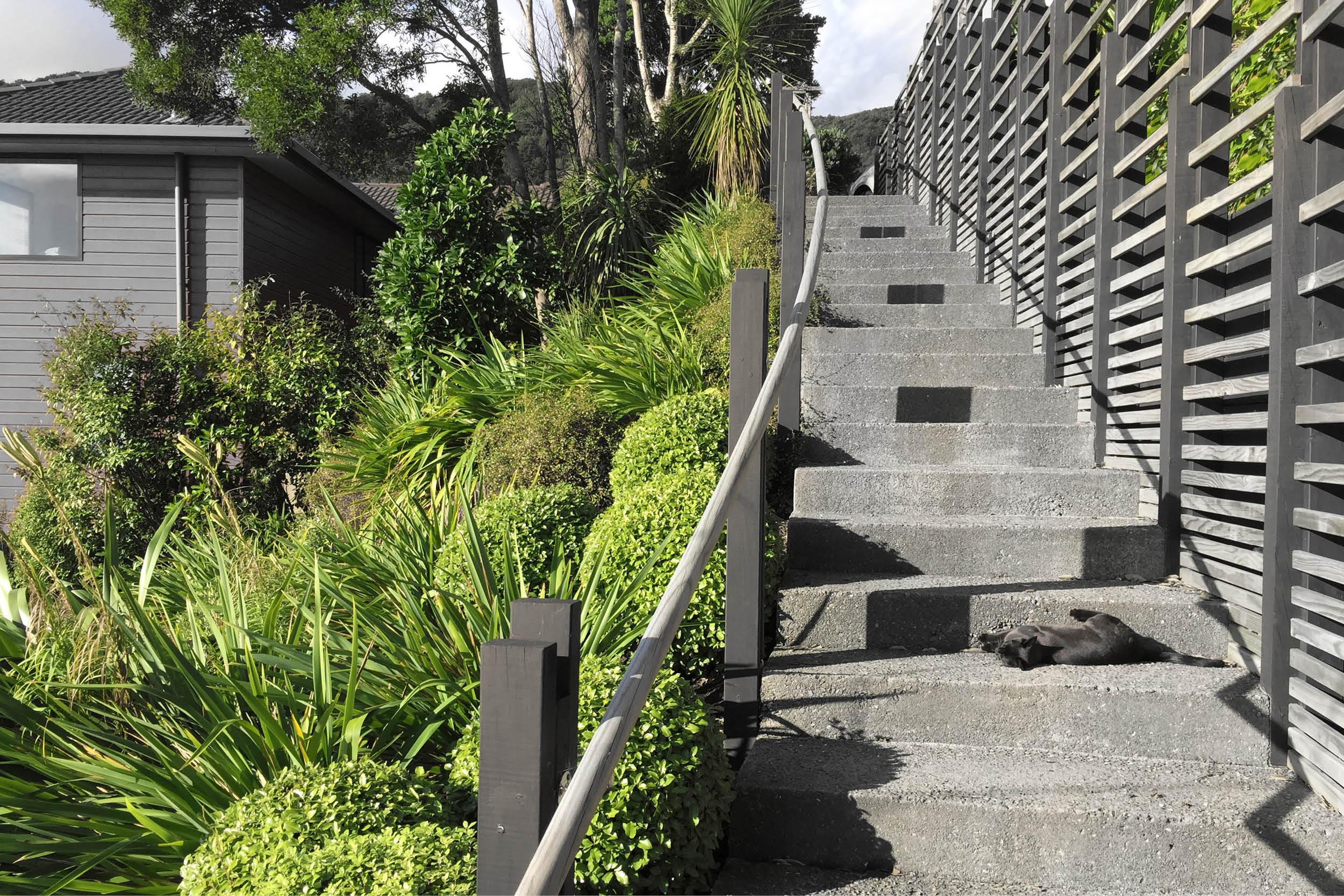 Garden_Steps_Wellington_1.jpg