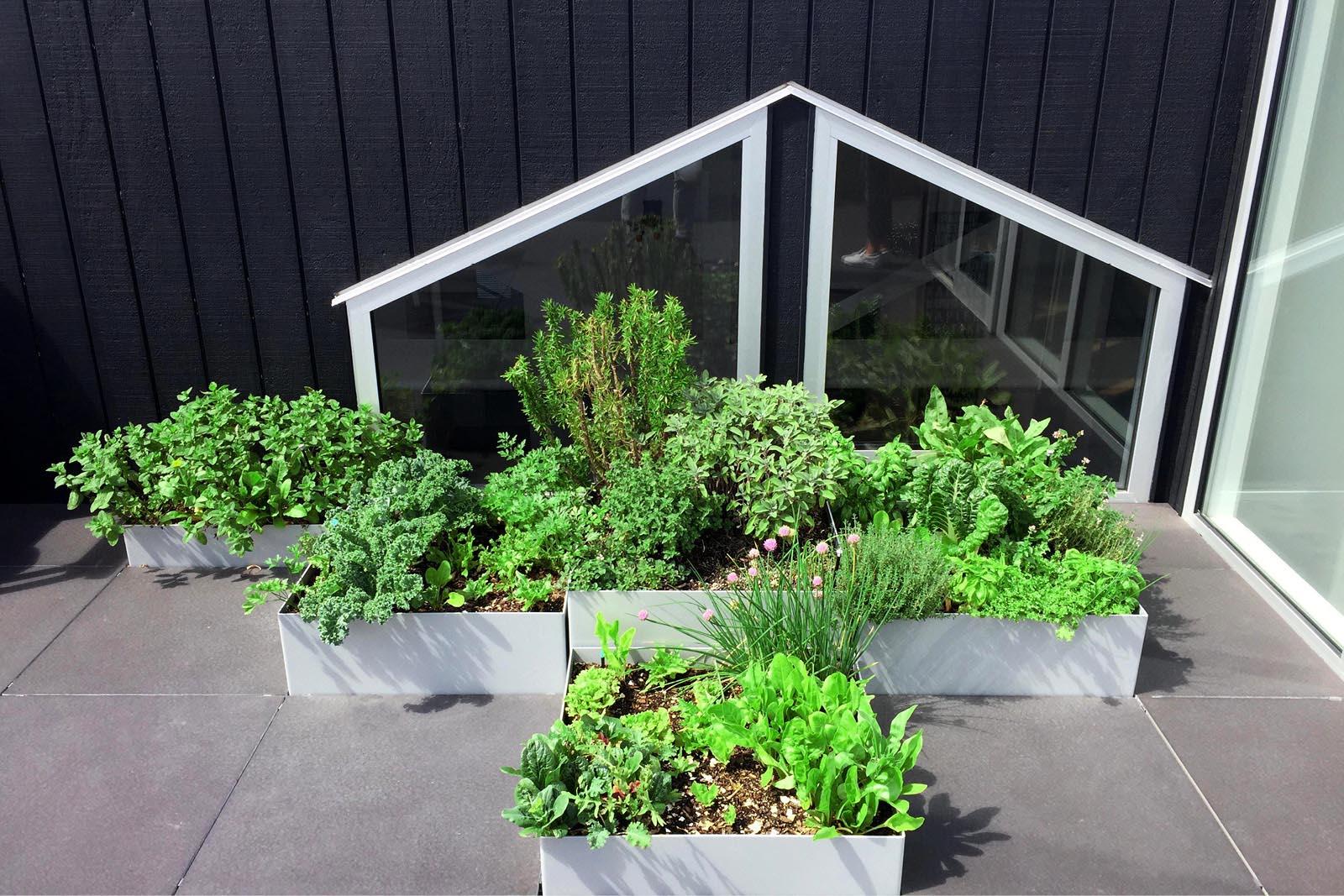 Rooftop_garden_City_custom.jpg