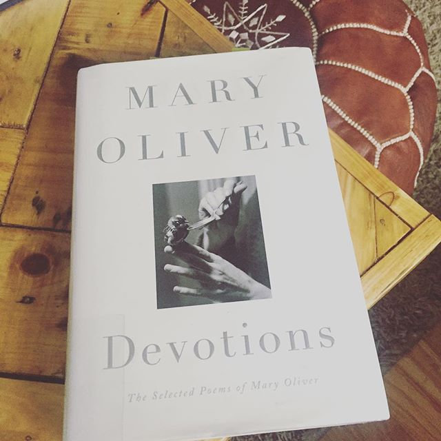 I walked into the library and this book stood there. As if patiently waiting for me. Knowing I would come. To join candle light conversations and morning inspirations over tea. Yes. Poetry is just what my heart needs. #letthebookpickyou #quietmoments #poetry #reflection #maryoliver