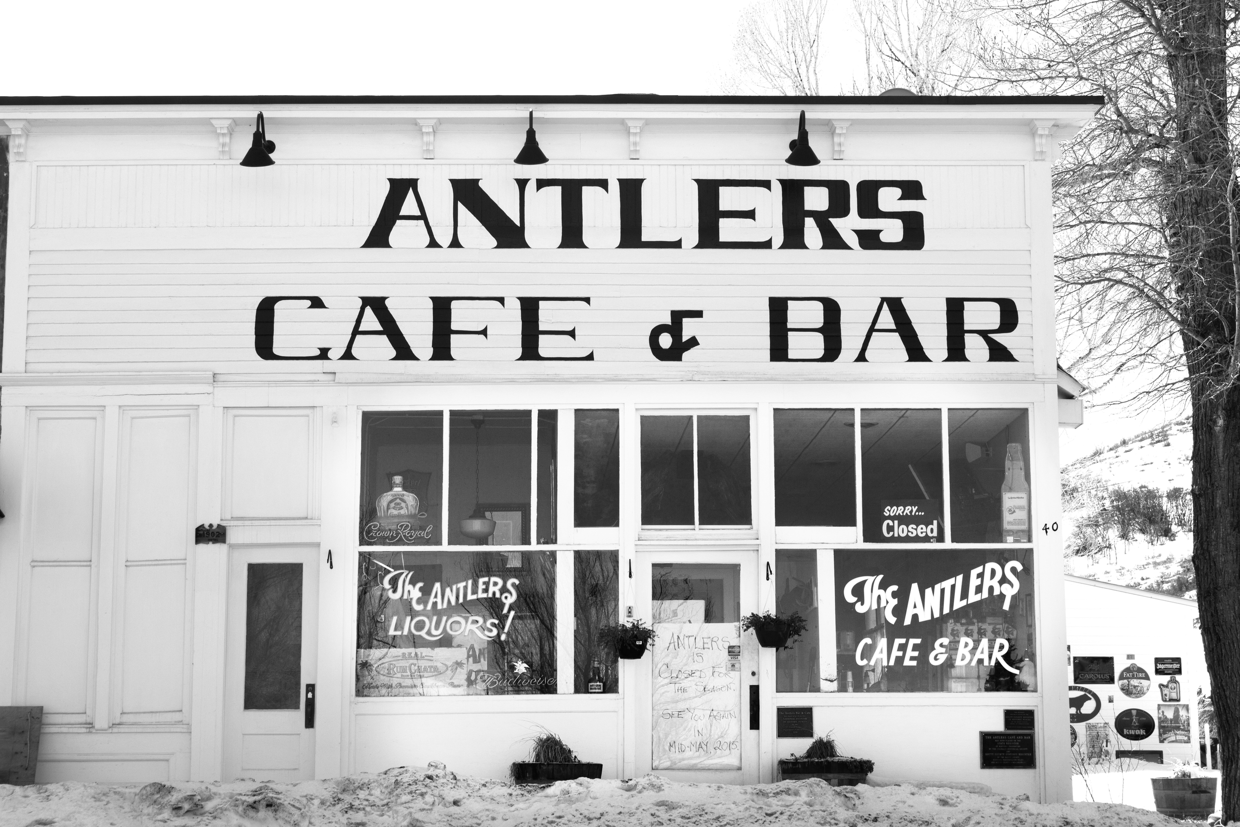 antlers5.jpg