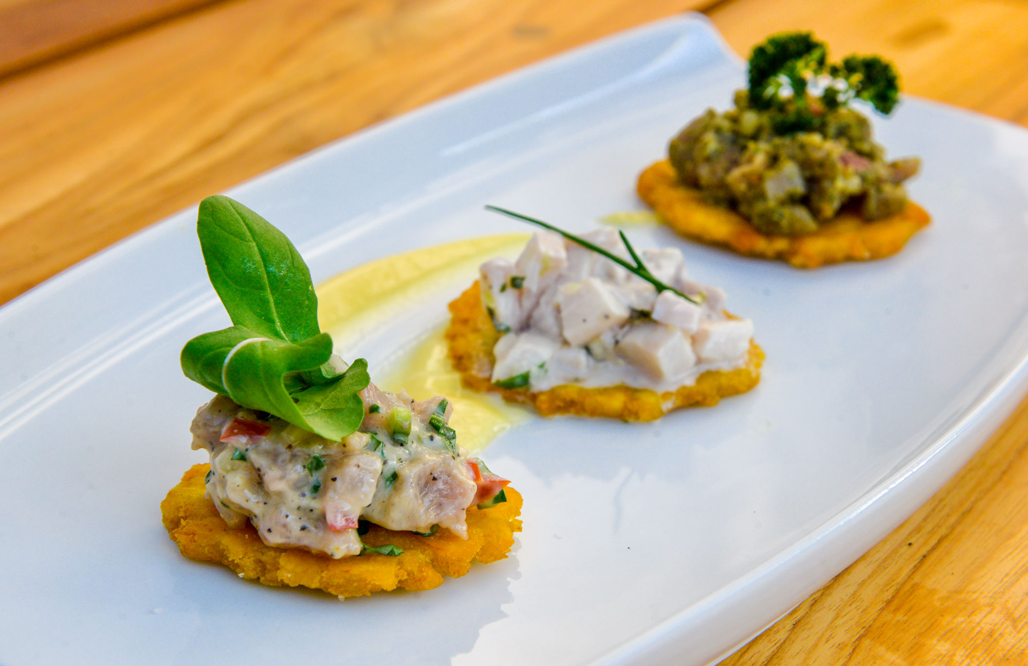 Trio-Patacones-Tuna-Mayo-Corvina-Ceviche-Tuna-Pesto.jpg