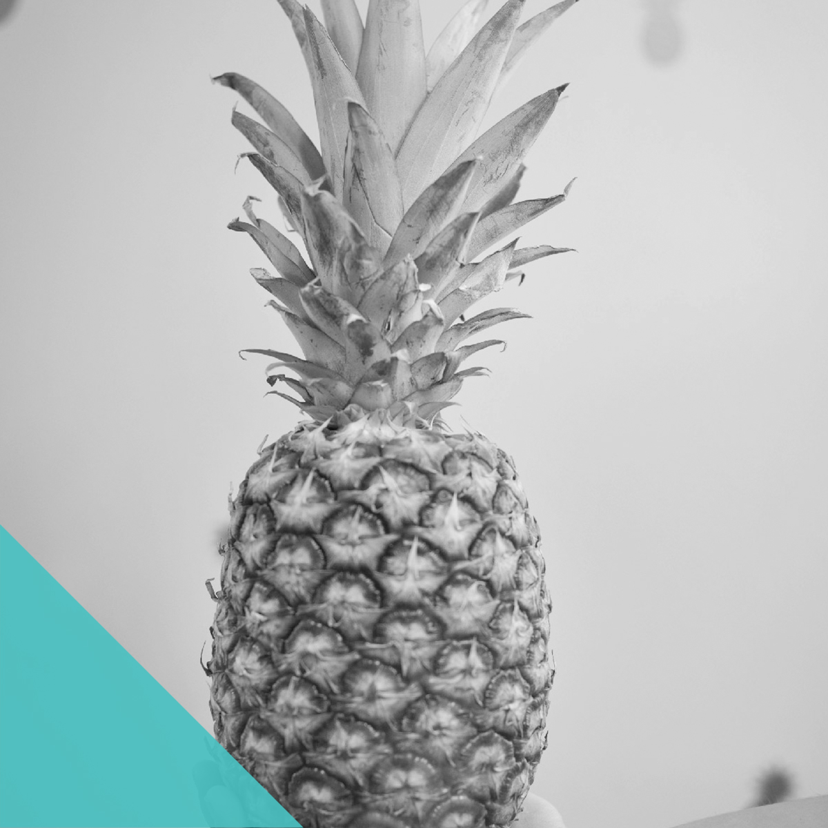 PINEAPPLE PARTY - invitation suite