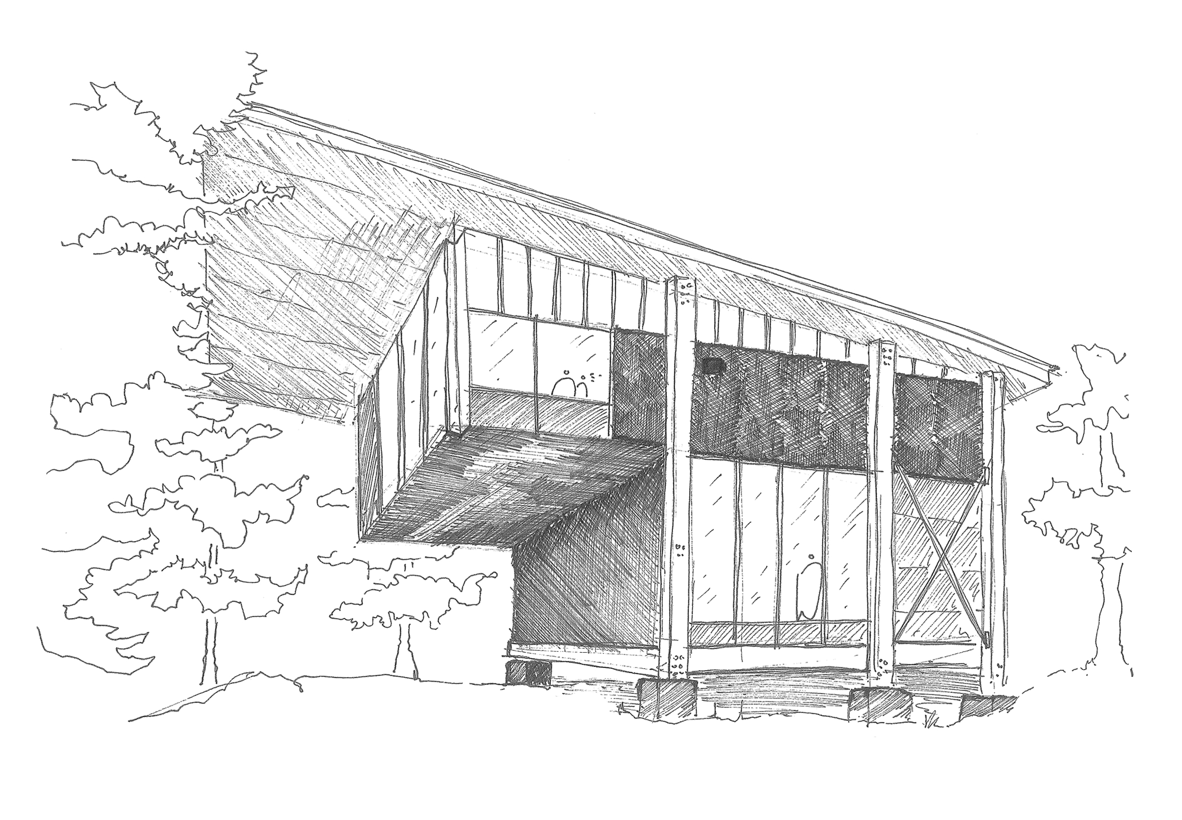 sketch - 5.jpg