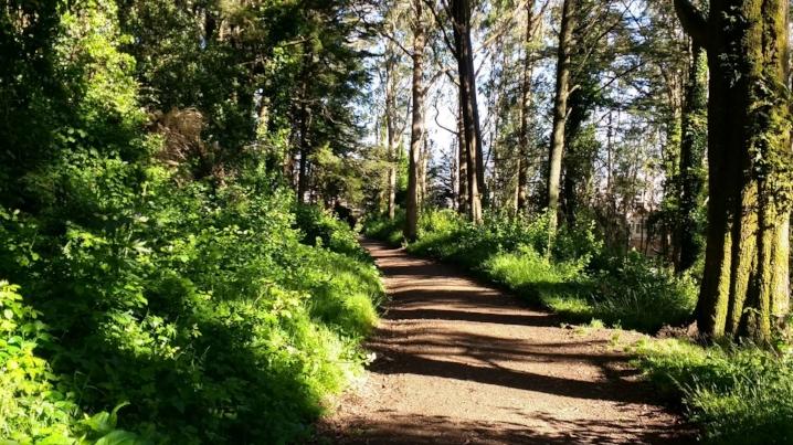 Trail 2 San Fran CA photo by Mike Zonta