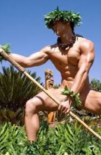 Hawaiian Dancer.jpg