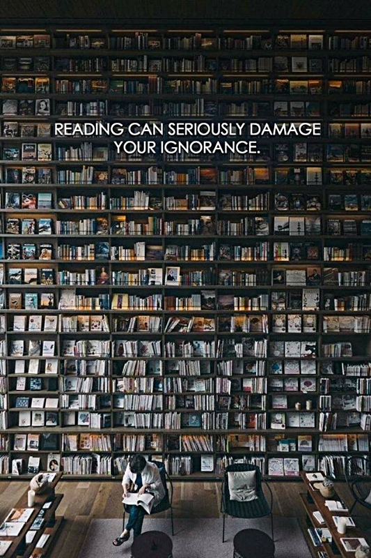 Reading can damage your ignorance.jpg