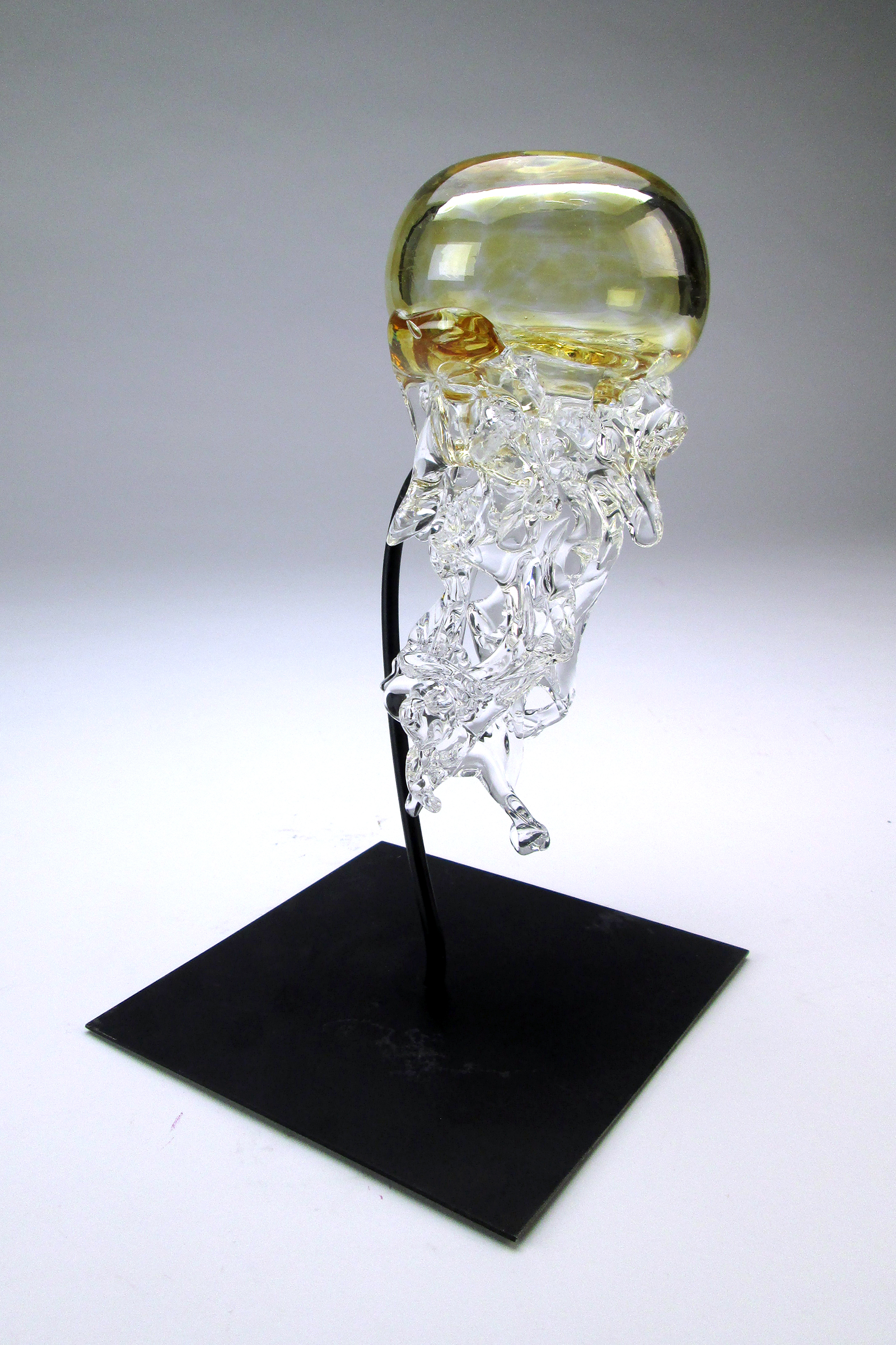 Blown glass jellyfish, 2017 Niche Award Student FInalist
