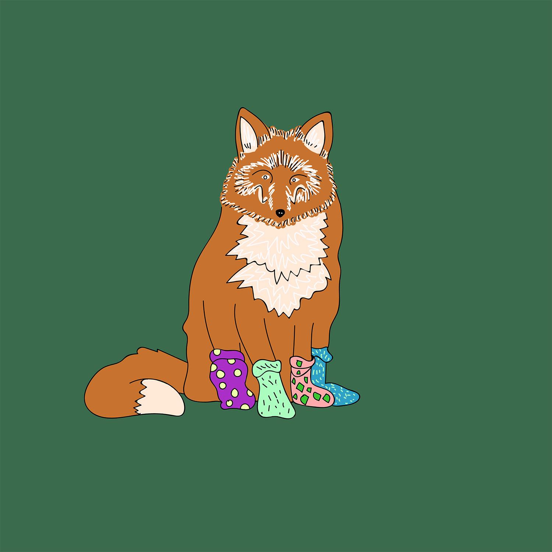 foxinsocks.jpg