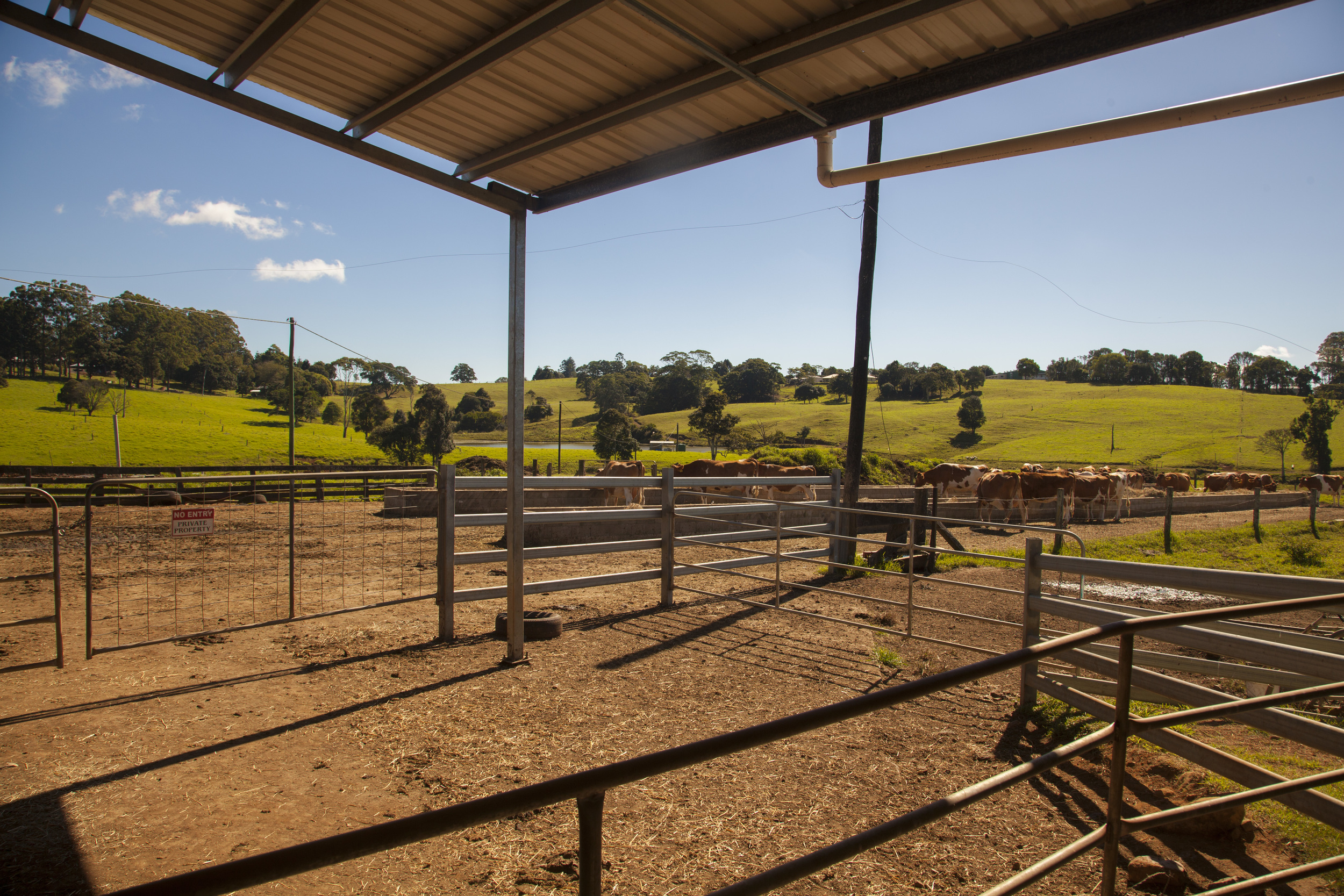 Maleny Dairy 18 May 2016_40.jpg