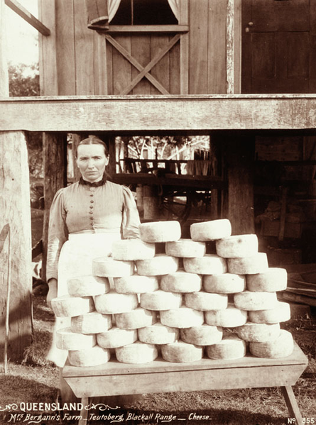 Mrs Bergman of Blackall Range Cheese circa 1899.  Photo copyright: Queensland State Archives.
