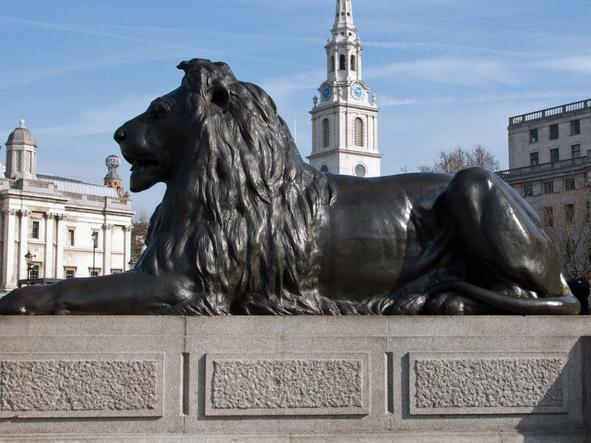 Trafalgar Lion: by Anthony O'Neil via Wikimedia Commons
