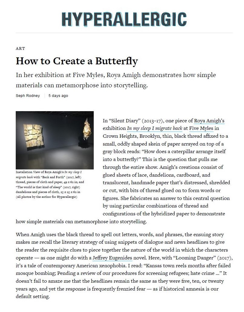Hyperallergic review of Roya Amigh_How to Create a Butterfly.jpg