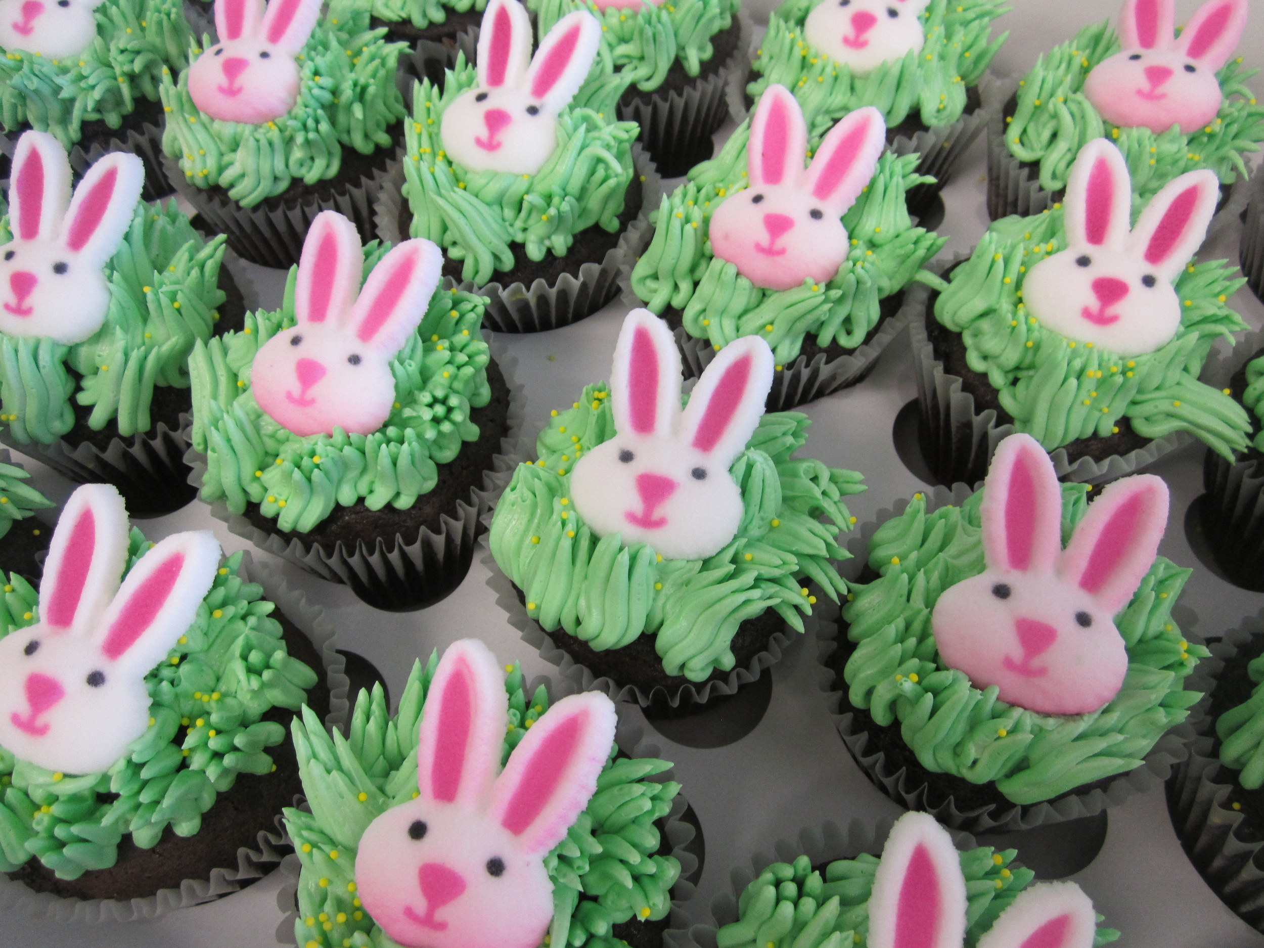 cupcakes-easter bunny with grass.JPG