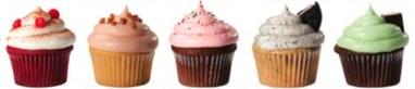 a row of cupcakes.jpg