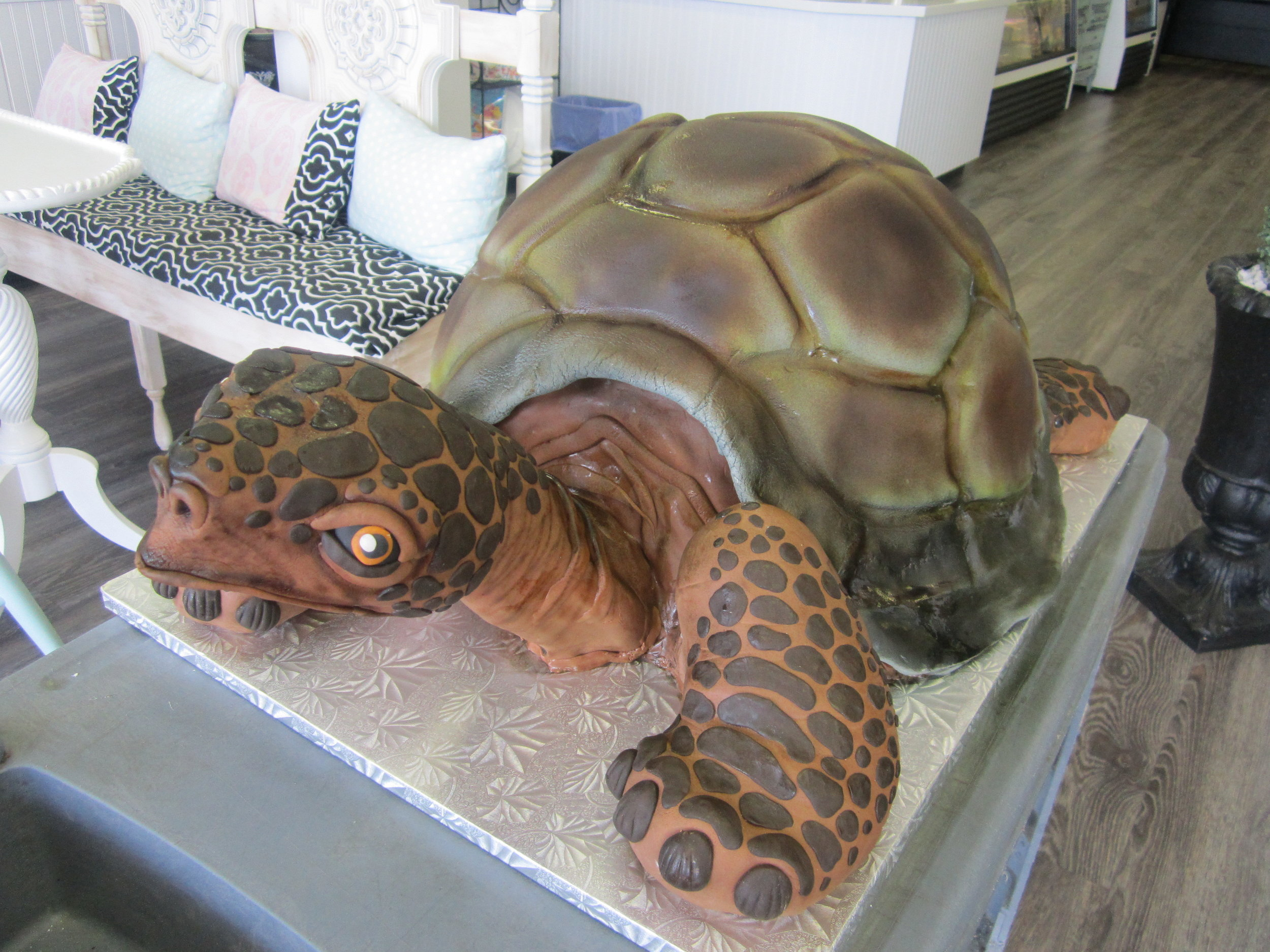turtle-sculpted galapagos.JPG