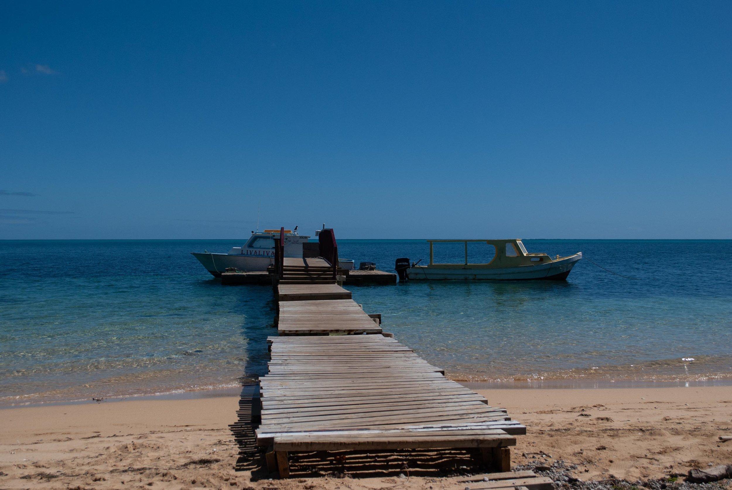 Tonga-15.jpg