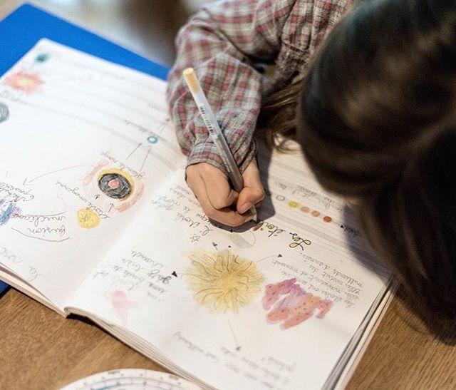 Émy passionnée par les étoiles ✨ ça donne de belles pages dans son cahier H.1 #cahiersh #homeschooling #starstudy