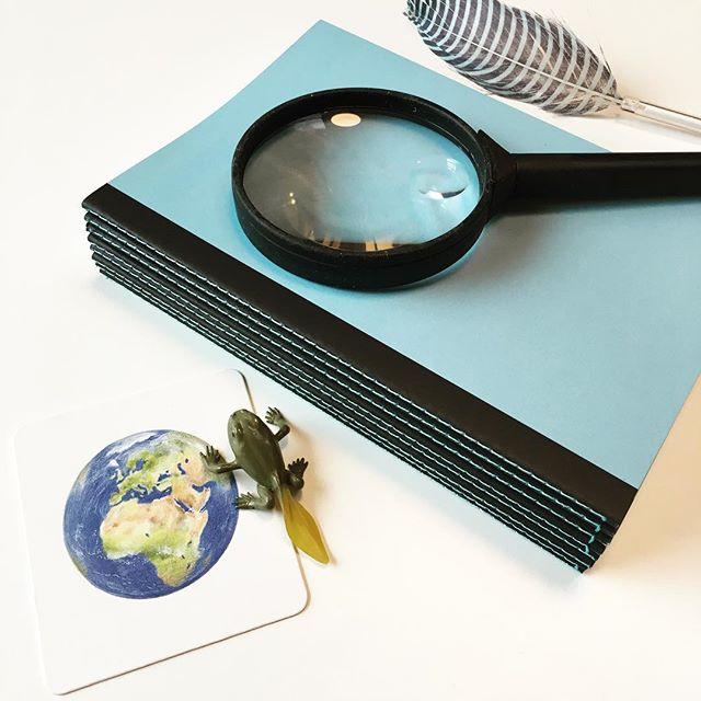Shooting du Cahier Curieux aujourd'hui... mais que cache ce petit cahier ? Vous êtes curieux ? #cahiersh #cahiercurieux