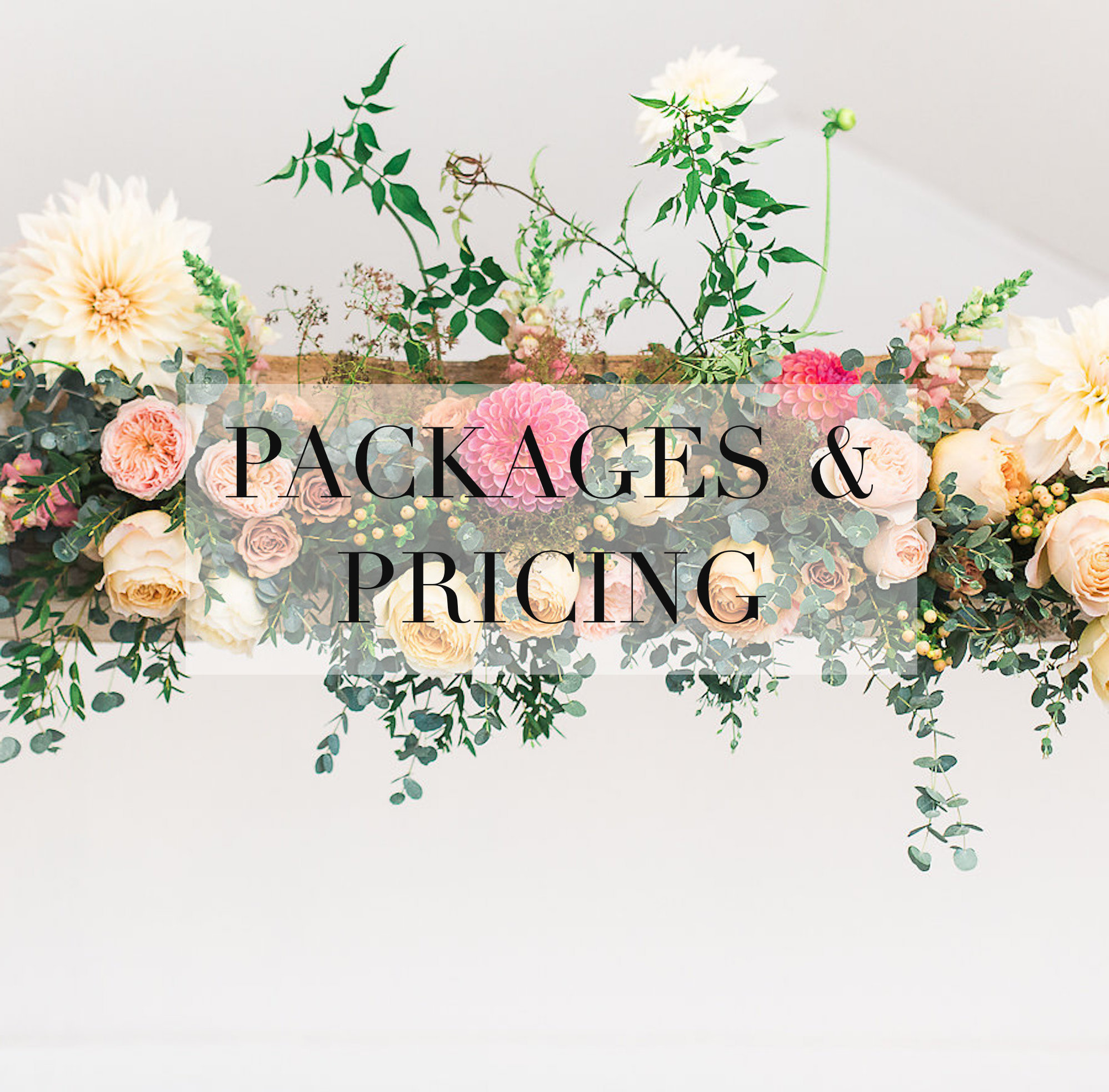 PACKAGES AND PRICING