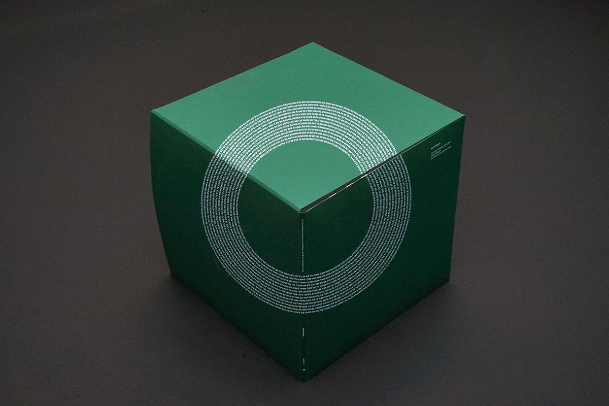 5. Cube outside.jpg
