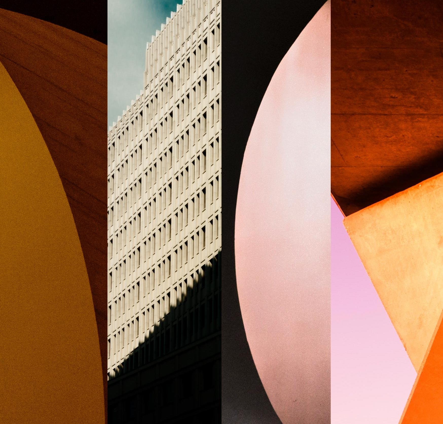 cateranatonnefleur-prints-sale.jpg
